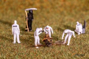 Andy`s Kleine Helden untersuchen den Tod einer Wespe (Foto: Andy Ilmberger)